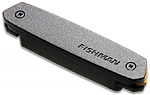 Fishman Neo-D Humbucking Pickup